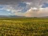 Abr (Cloud) Jungle - جنگل ابر شاهرود