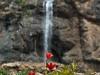 Sangan Waterfall - آبشار سنگان