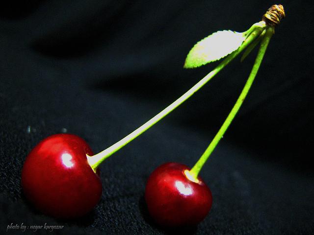 love art - by نگار کارگذار