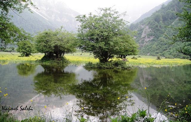 Daryasar - دریاسر