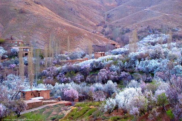 Qzaan (Ghazan) village - روستای قزاان