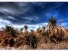 Garmeh Desert Village