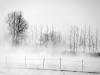 Fog - by قاب خالی